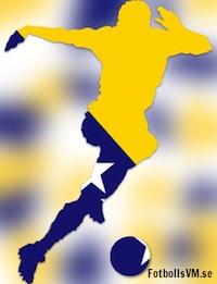 Fakta om Bosnien & Hercegovinas landslag